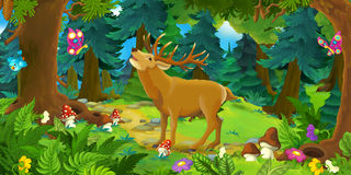 Cartoon scene with happy wild deer standing in the forest Royalty Free Stock Photography