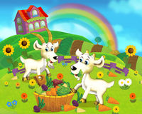 Cartoon scene - life on the farm - family of goats eating dinner - vegetables. Happy and funny traditional scene for different usage - for different fary tales royalty free illustration