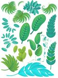 Cartoon scene with set of leafs nature on white background royalty free illustration