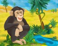 Cartoon scene - wild africa animals - ape. Happy and colorful illustation for the children Stock Photos