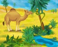 Cartoon scene - wild Africa animals - dromedary Stock Photos