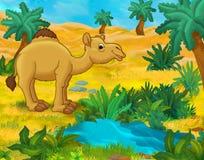 Cartoon scene - wild africa animals - dromedary Stock Photo