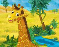Cartoon scene - wild africa animals - giraffe Stock Photography
