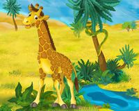Cartoon scene - wild africa animals - giraffe Stock Images