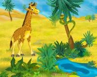 Cartoon scene - wild africa animals - giraffe Royalty Free Stock Photos