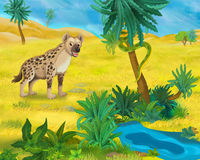Cartoon scene - wild africa animals - hyena Stock Photos