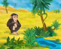 Cartoon scene - wild Africa animals - monkey Royalty Free Stock Image