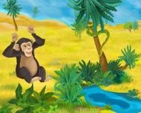 Cartoon scene - wild Africa animals - monkey Royalty Free Stock Images