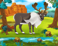 Cartoon scene - wild africa animals - reindeer Stock Photos