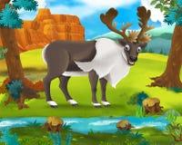 Cartoon scene - wild africa animals - reindeer Stock Photos