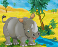 Cartoon scene - wild africa animals - rhino Royalty Free Stock Images