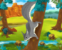 Cartoon scene - wild africa animals - squirrel Royalty Free Stock Photos