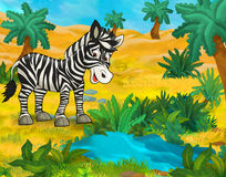 Cartoon scene - wild africa animals - zebra Stock Photography
