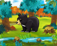 Cartoon scene - wild america animals - bear Royalty Free Stock Photography