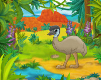 Cartoon scene - wild america animals - caricature - emu Stock Image