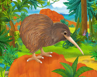 Cartoon scene - wild america animals - kiwi Royalty Free Stock Photography