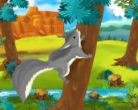 Cartoon scene - wild america animals - squirrel Royalty Free Stock Photography
