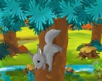 Cartoon scene - wild america animals - squirrel Royalty Free Stock Photo