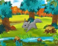 Cartoon scene - wild america animals - squirrel - raccoon Royalty Free Stock Photography