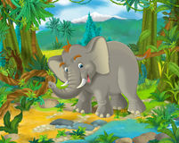 Cartoon scene - wild Asia animals - elephant Stock Photo