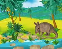 Cartoon scene - wild South America animals - armadillo Stock Photo