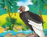 Cartoon scene - wild South America animals - condor Royalty Free Stock Photo