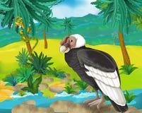Cartoon scene - wild South America animals - condor Stock Image