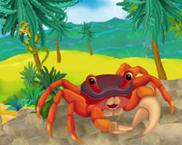 Cartoon scene - wild South America animals - crab Royalty Free Stock Photos