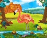 Cartoon scene - wild South America animals - flamingo Stock Photos