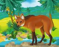 Cartoon scene - wild South America animals - maned wolf Royalty Free Stock Photography