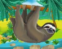 Cartoon scene - wild South America animals - sloth Royalty Free Stock Image
