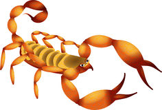 Cartoon Scorpion Stock Photography