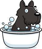 Cartoon Scottie Bath Stock Image