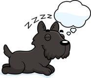 Cartoon Scottie Dreaming Royalty Free Stock Photo