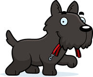 Cartoon Scottie Leash Royalty Free Stock Photography