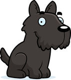 Cartoon Scottie Sitting Royalty Free Stock Image