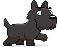 Cartoon Scottie Walking Stock Photo