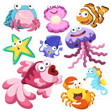 Cartoon sea animal illusration collection Royalty Free Stock Images