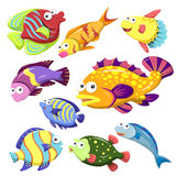 Cartoon sea animal illusration collection Stock Images