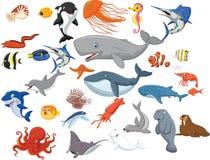 Cartoon sea animals isolated on white background Stock Photos