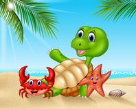 Cartoon sea animals relaxing on the beach Stock Photo