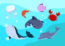 Cartoon sea Animals set. Stock Photography