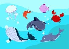 Cartoon sea Animals set. Stock Photography