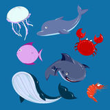 Cartoon sea Animals set. Stock Images