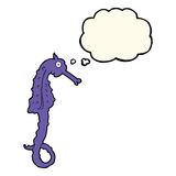Cartoon sea horse with thought bubble Royalty Free Stock Image