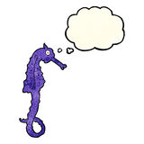 Cartoon sea horse with thought bubble Royalty Free Stock Photos