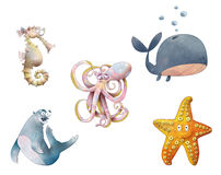 Cartoon Sea Life (with clipping paths) Stock Images