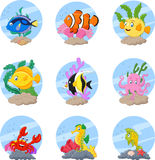 Cartoon sea life collection set. Illustration of Cartoon sea life collection set Royalty Free Stock Image