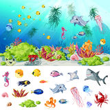 Cartoon Sea And Ocean Life Concept. With fishes jellyfishes crab shells seahorse shark stingray dolphin corals seaweeds plants vector illustration Stock Photo