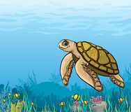Cartoon sea turtle and coral reef. Funny cartoon sea turtle and coral reef with yellow fish. Underwater life Royalty Free Stock Image